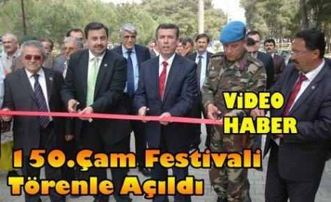 150.Çam Festivali Törenle Açıldı(VİDEO)