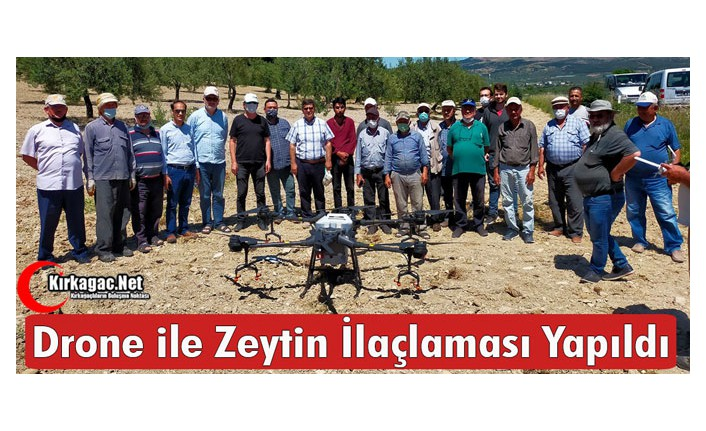 KIRKAĞAÇ'TA DRONE İLE ZEYTİN İLAÇLAMASI YAPILDI