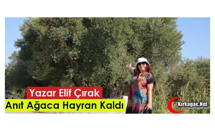 """YAZAR ELİF ÇIRAK """"TARİHİ ANIT AĞACA"""" HAYRAN KALDI"""