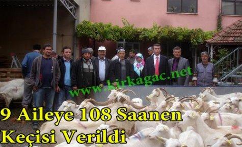9 Aileye 108 Saanen Keçisi Verildi