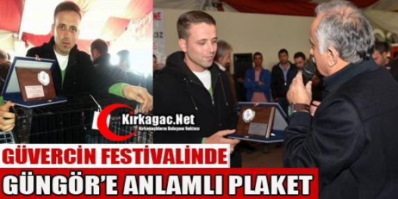 GÜVERCİN FESTİVALİNDE GÜNGÖR'E PLAKET