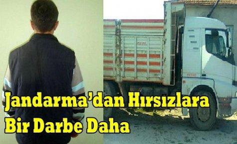 JANDARMA'DAN HIRSIZLARA BİR DARBE DAHA