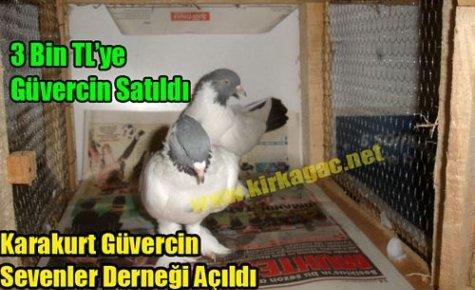 Karakurt Güvercin Sevenler Derneği Açıldı