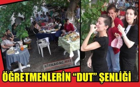 ÖĞRETMENLERİN 'DUT' ŞENLİĞİ