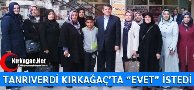 """TANRIVERDİ KIRKAĞAÇ'TA 'EVET"""" İSTEDİ"""