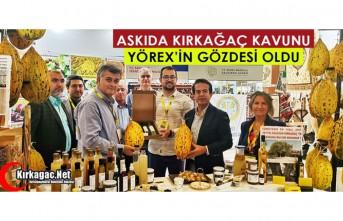 ASKIDA KIRKAĞAÇ KAVUNU YÖREX'İN GÖZDESİ OLDU