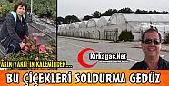 """AKIN YAKIT 'BU ÇİÇEKLERİ SOLDURMA GEDÜZ"""""""