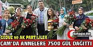 BELEDİYE'DEN ANNELERE 7500 ADET GÜL