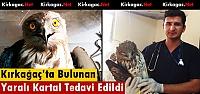KIRKAĞAÇ'TA BULUNAN YARALI KARTAL TEDAVİ EDİLDİ