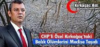 ÖZEL, KIRKAĞAÇ'TAKİ TOPLU BALIK ÖLÜMLERİNİ...