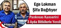 PANKREAS KANSERİNİ BİTKİLERLE YENDİ
