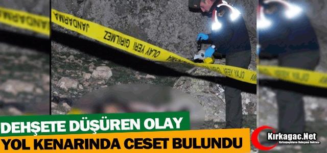 YOL KENARINDA CESET BULUNDU