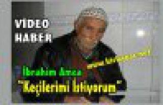 """İBRAHİM AMCA""""KEÇİLERİMİ İSTİYORUM""""(VİDEO)"""