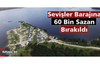 SEVİŞLER BARAJINA 60 BİN SAZAN BIRAKILDI